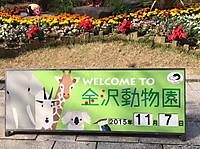 Kanazawazoo8_3