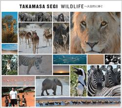 Wildlife_cd_2501_2
